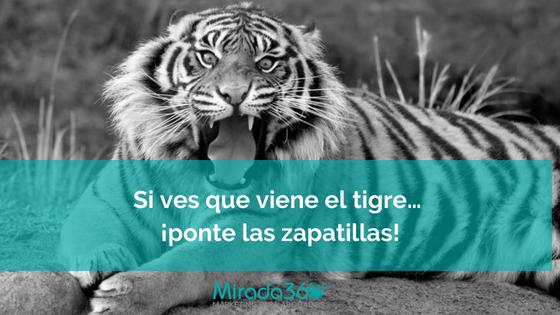 Si ves que viene el tigre… ¡ponte las zapatillas!